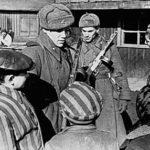 Шабаш русофобов  или Бои за правду истории в год 70-летия Великой Победы