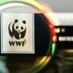 Валентин Катасонов. WWF – инструмент построения земного рая для «золотого миллиона»
