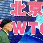 Россия, Китай и ВТО. О редкоземельных металлах, нефти и «опиумных войнах». II часть
