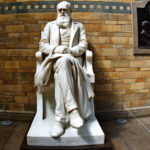 В. Ю. Катасонов. Дарвинизм и христианство не совместимы (Мысли святителя Николая Сербского)