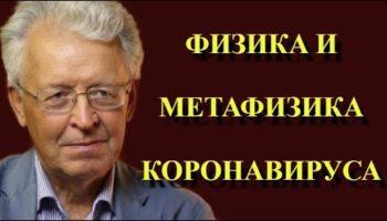 ФИЗИКА И МЕТАФИЗИКА КОРОНАВИРУСА